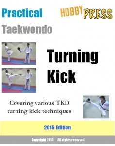 turningkick