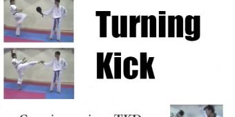 turningkick